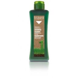 Anti - dandruff shampoo - Keeps the hair and scalp free from dandruff for longer